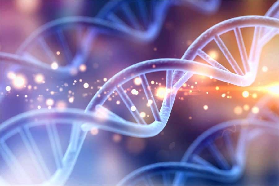 DNA Gene Keys