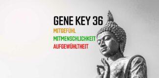 36. Gene Key