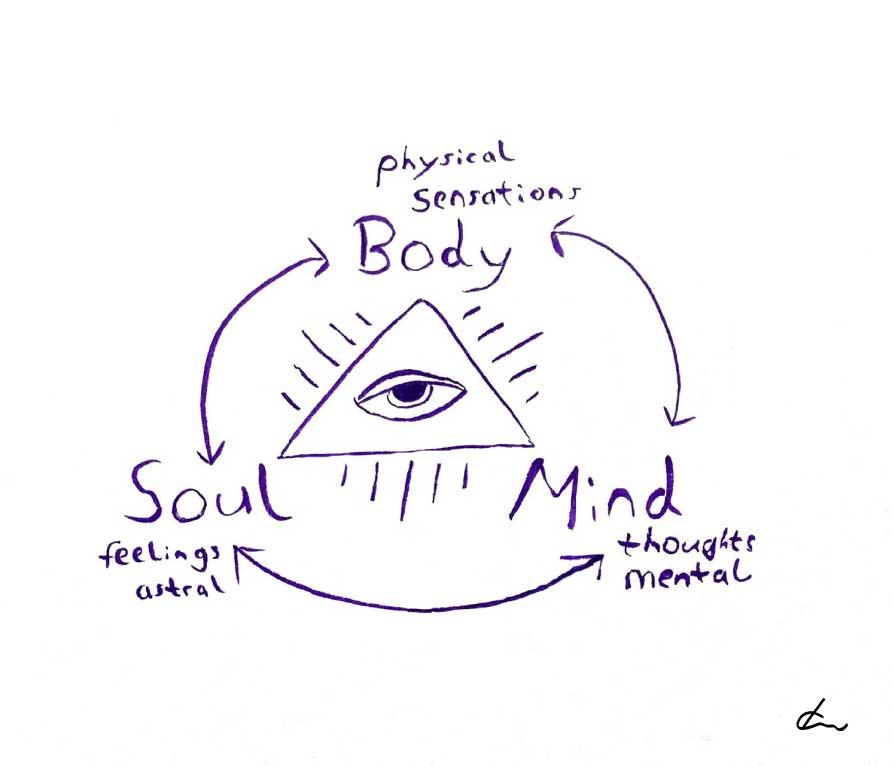 Wie Körper Geist und Seele interagieren