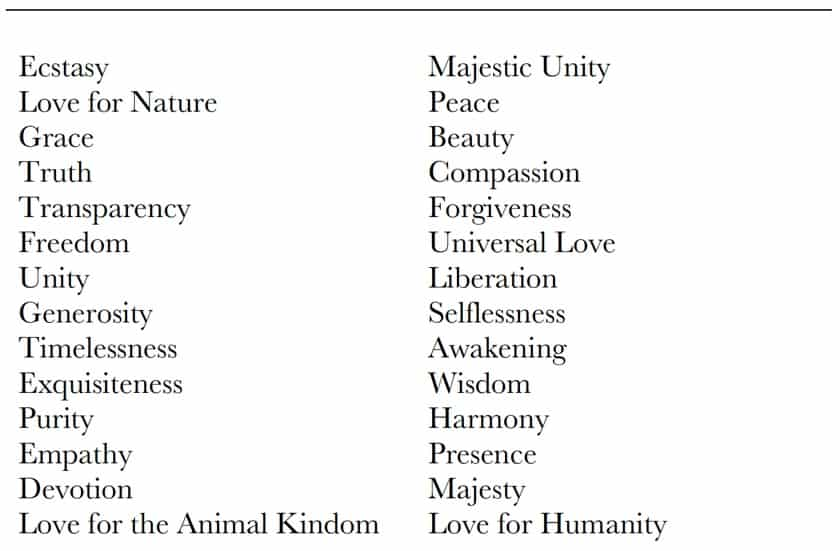 Consciousness Qualities
