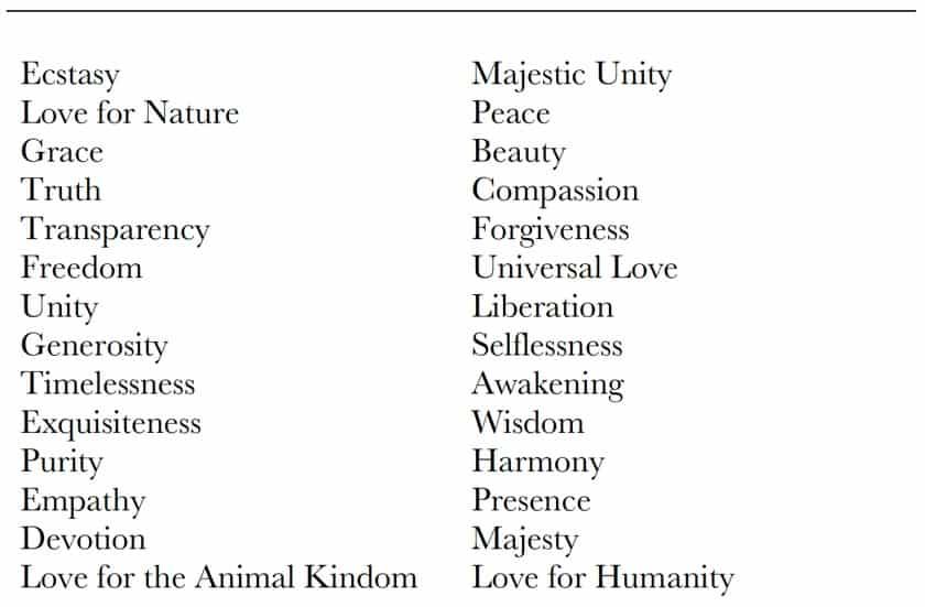 Consciousness Qualities