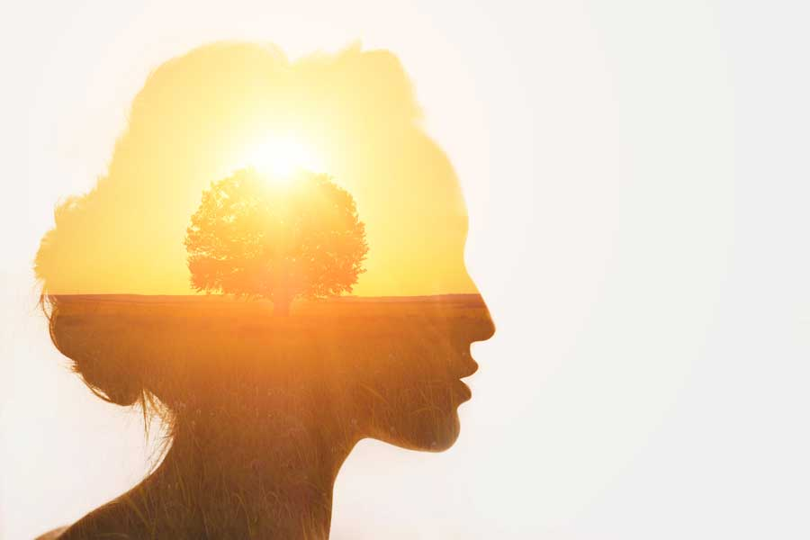 Mindfulness for higher dimensions