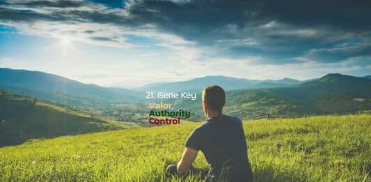 Gene Key 21